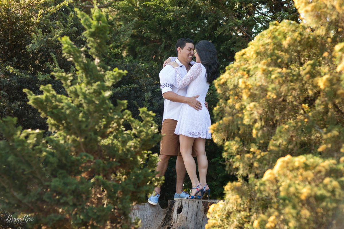 casamento brasília prévia dos noivos ensaio do casal pré wedding jardim botânico de brasília jbb